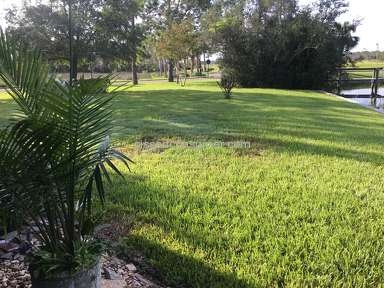 Trugreen Lawn Service review 230244