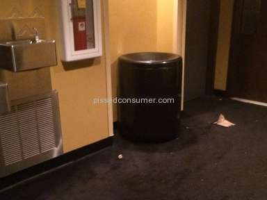 Amc Theatres Sanitary Conditions review 136843