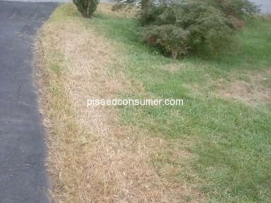 TruGreen Lawn Service review 329766