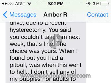 Amber Rosenbaugh Breeder Animal Services review 31971