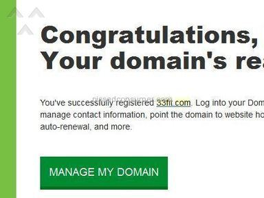 GoDaddy Domain Service review 113477