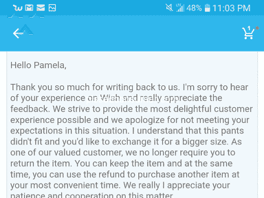 WISH IS A FRAUD COMPANY AND THEY MISLEAD THEIR CUSTOMERS