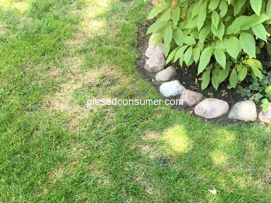 TruGreen Lawn Service review 306014