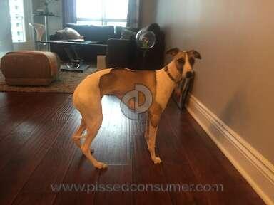 Petsmart Pet Stores review 100067