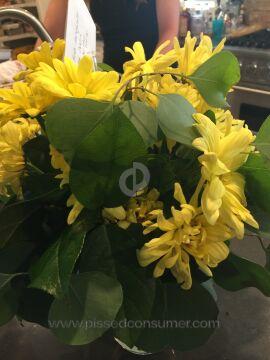 Flower Delivery Express Eternal Friendship Bouquet