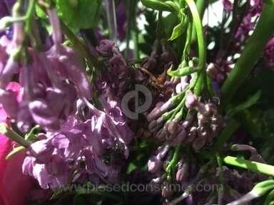 The Bastrop Flower Shoppe Flowers / Florist review 121143