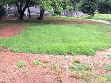 TruGreen Ruined My Beautiful Lawn