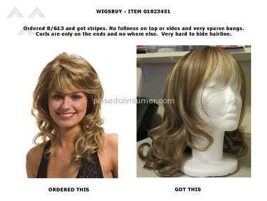 Wigsbuy Human Hair Wig review 139851