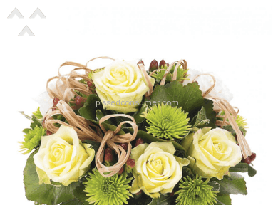 Avasflowers Arrangement review 142530