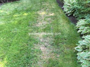 TruGreen Lawn Service review 306012