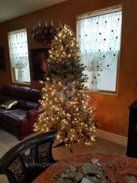 Polygroup Christmas Tree