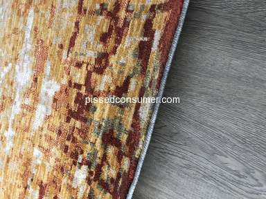Living Spaces Rug review 290660