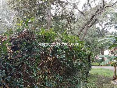 Jax 1 Lawn Care Landscaping and Gardening review 336646