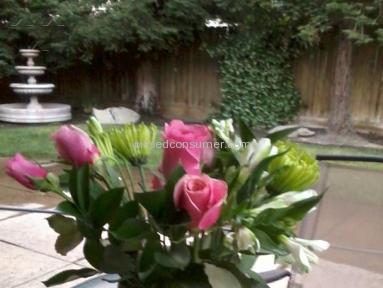 ProFlowers Bouquet review 7231
