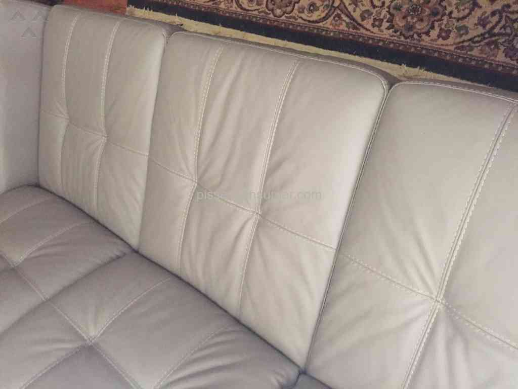 Star Furniture   Sofa Review From Wells Branch, Texas