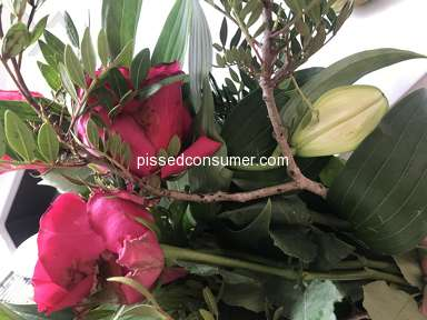 Prestige Flowers Roses Flowers review 311990