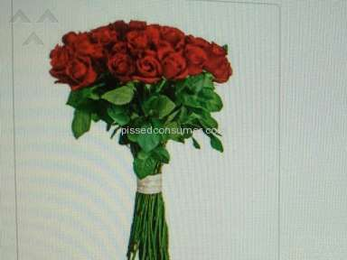 Flower Delivery Express Bouquet review 99755