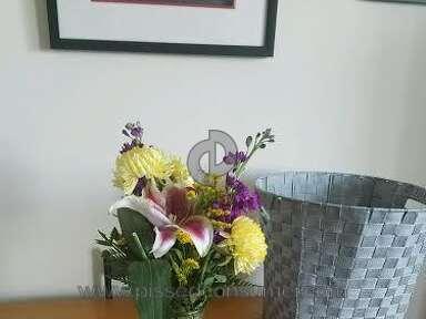 Avasflowers Arrangement review 163414