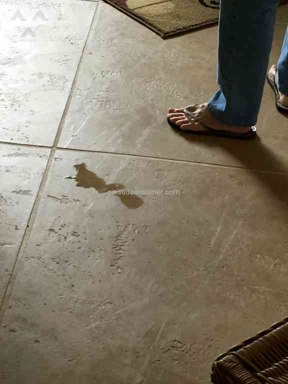Stanley Steemer Tile And Grout Cleaning Service Review From Honolulu Hawaii