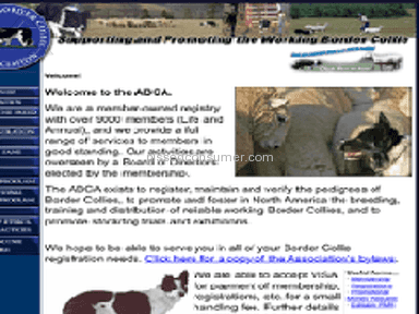 American Border Collie Association Animal Services review 153244