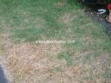 TruGreen Lawn Service review 329774