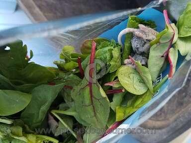 Walmart Marketside Spinach review 213726