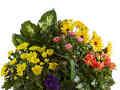 Justflowers Garden Of Gifts Flower Basket