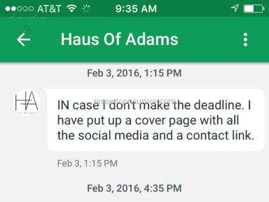 Haus Of Adams Web design review 115241