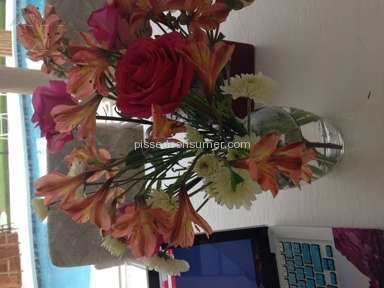 Flower Delivery Express Arrangement review 33383