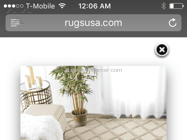 RugsUSA - Simple Review #1476951695