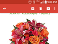 Proflowers - Bouquet Review from New Orleans, Louisiana