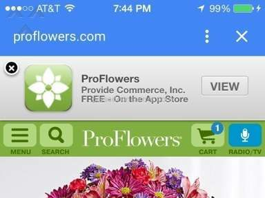 ProFlowers Bouquet review 83747