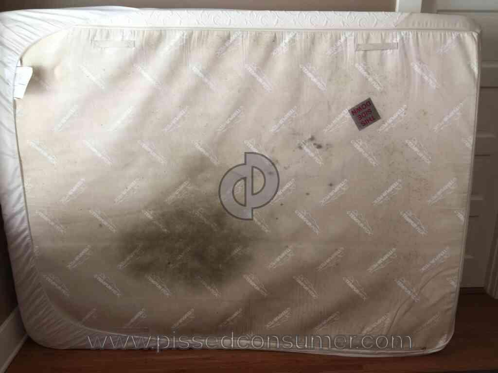 Tempur Contour Supreme Reviews.. Tempurpedic Cloud Supreme Mattress. Amerisleep As3 Memory Foam ...