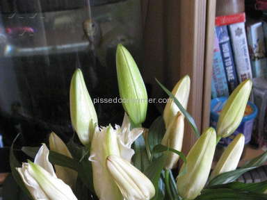 Prestige Flowers - Inferior quality flowers