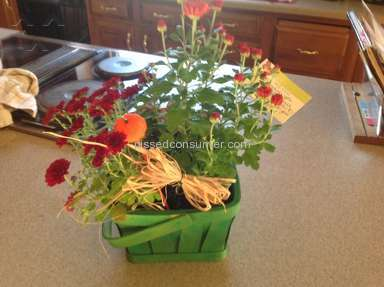 From You Flowers Arrangement review 49605