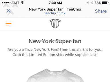 Teechip Auctions and Internet Stores review 91059