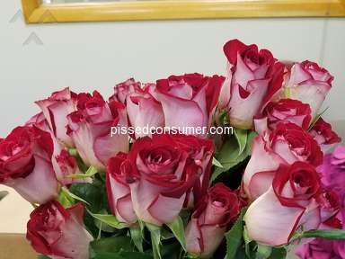 ProFlowers Flowers / Florist review 294332