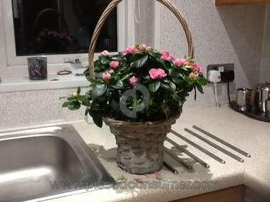 Prestige Flowers Flowers review 118823