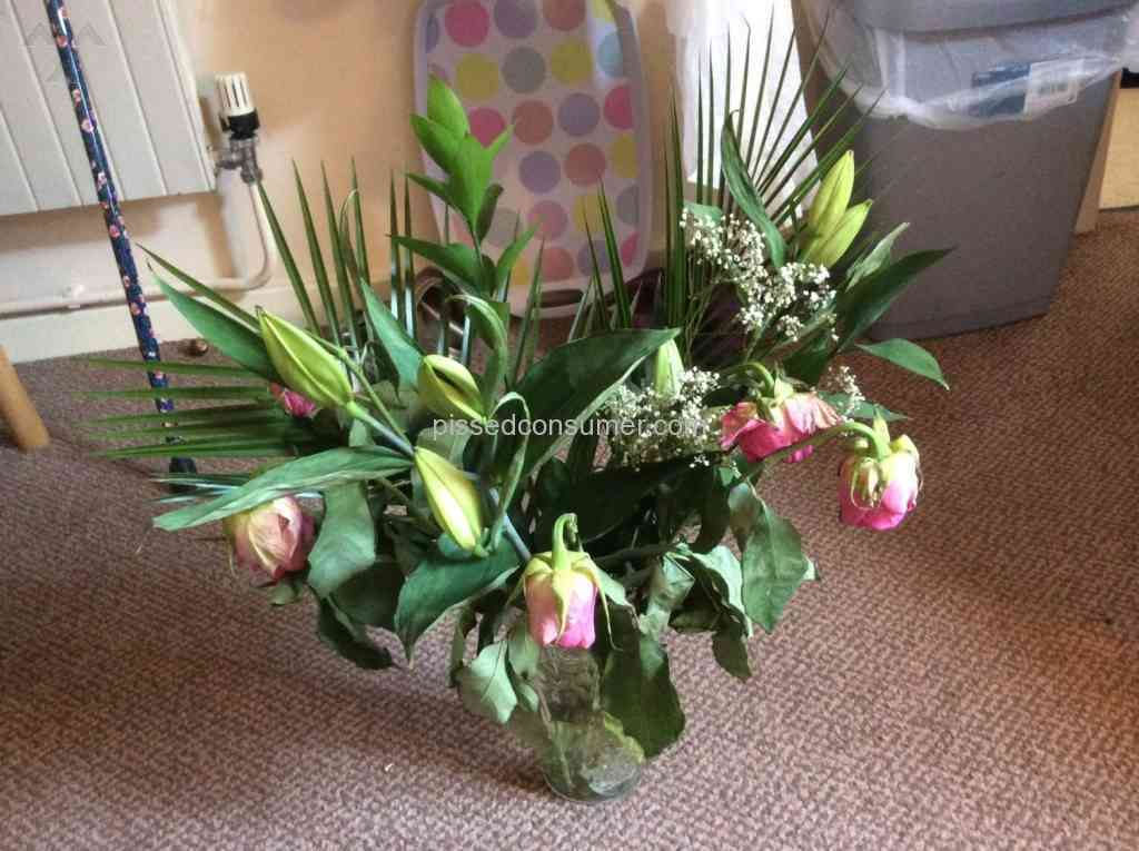Prestige Flowers - Flowers drooping and dead in three days May 03 ...