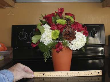 Flower Delivery Express Arrangement review 33047