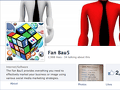 SCAMMER SITE .. THE FANBAU5, THEFANBAU5, THE FAN BAU5, BEWARE, REVIEW, STAY AWAY FROM THIS COMPANY!!