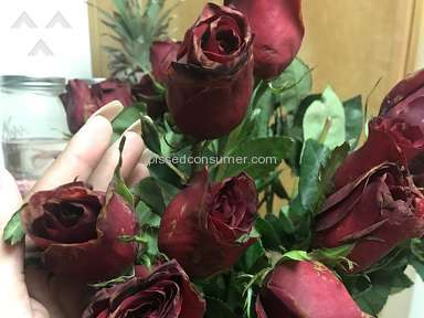 Avasflowers Roses Flowers review 192572