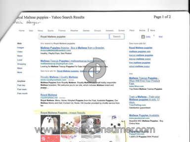 Puppyfind Animal Services review 58509