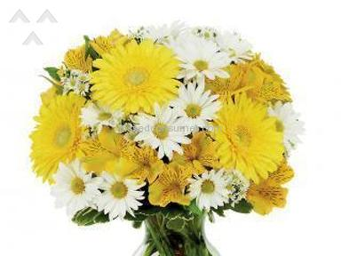 Avasflowers Bright Sunshine Bouquet review 153750