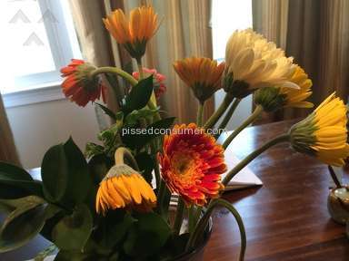 Avasflowers Flowers / Florist review 68633