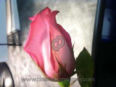1800flowers Arrangement review 11125