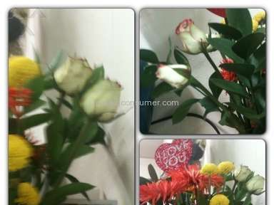 ProFlowers Bouquet review 12499