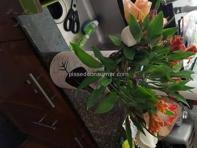 Proflowers Flowers review 115347