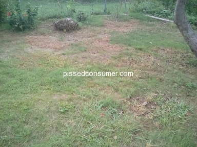 TruGreen Lawn Service review 329770