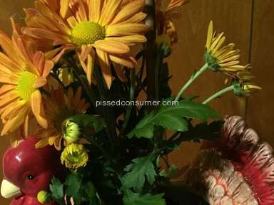 Proflowers Flowers review 112077